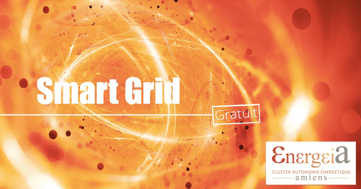 """bandeau de présentation """"Conférence Smart Grid"""" Energeia"""